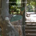 exposicion-fotos-paseando