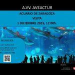 visita-acuario-2019